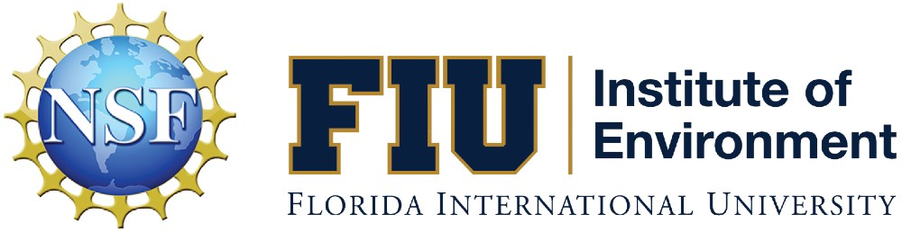 Fiu Summer 2022 Calendar.Reu Site Understanding Coastal Ecosystems From The Everglades To The Coral Reefs Institute Of Environment Florida International University